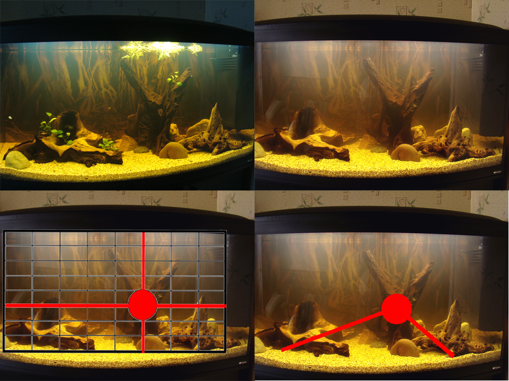 Оформление аквариумов своими руками