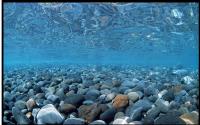 Пленка для аквариумного фона