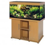 Что нужно знать перед покупкой первого аквариума