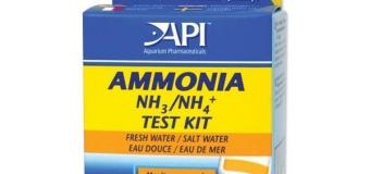 Отравление аммиаком NH3 у аквариумных рыб