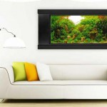 Настенный аквариум (аквариум-картина)